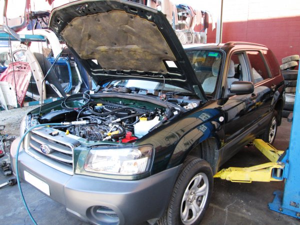 2004 SUBARU FORESTER | Dismantling Now | Penrith Auto Recyclers are dismantling major brand cars right now! We offer fully tested second hand, used car parts and genuine or aftermarket products for most of the major brands. (../../dc/gallery/FOR1_1.jpg)